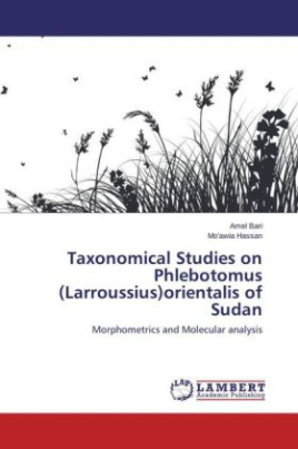 Taxonomical Studies on Phlebotomus (Larroussius)orientalis of Sudan