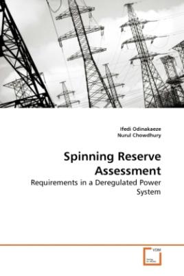 Spinning Reserve Assessment