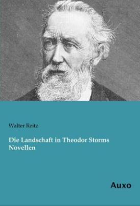 Die Landschaft in Theodor Storms Novellen