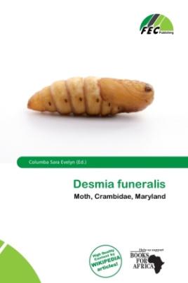 Desmia funeralis
