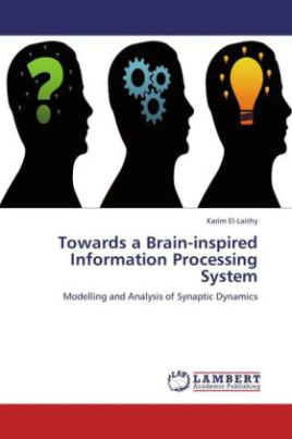 Towards a Brain-inspired Information Processing System