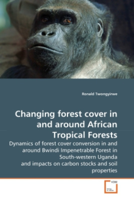 Changing forest cover in and around African Tropical Forests