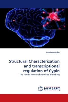 Structural Characterization and transcriptional regulation of Cypin