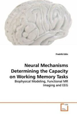 Neural Mechanisms Determining the Capacity on  Working Memory Tasks