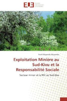 Exploitation Minière au Sud-Kivu et la Responsabilité Sociale