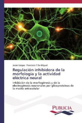 Regulación inhibidora de la morfología y la actividad eléctrica neural