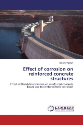Effect of corrosion on reinforced concrete structures