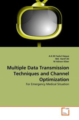 Multiple Data Transmission Techniques and Channel Optimization