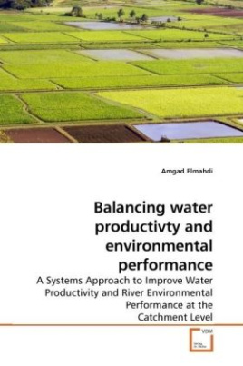 Balancing water productivty and environmental performance
