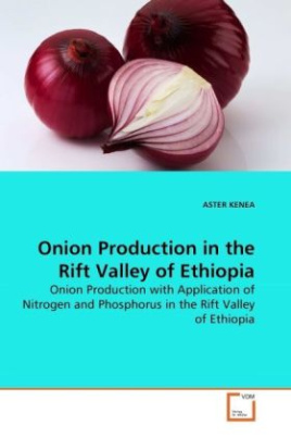 Onion Production in the Rift Valley of Ethiopia