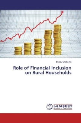 Role of Financial Inclusion on Rural Households