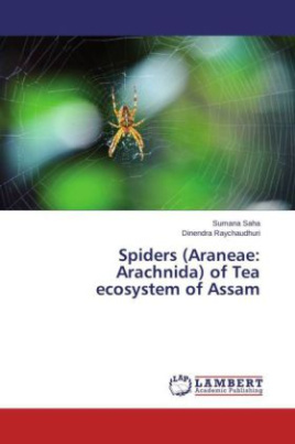 Spiders (Araneae: Arachnida) of Tea ecosystem of Assam