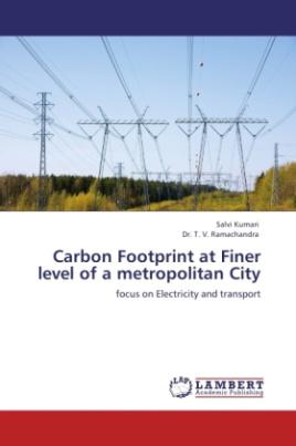 Carbon Footprint at Finer level of a metropolitan City