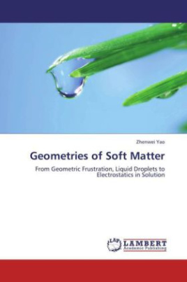 Geometries of Soft Matter