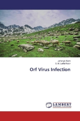 Orf Virus Infection