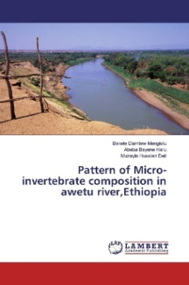 Pattern of Micro-invertebrate composition in awetu river,Ethiopia