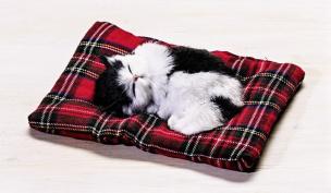 Deko-Kätzchen schlafend weiß-schwarz