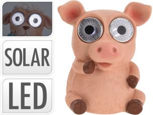 Solarleuchte lustiges Schwein