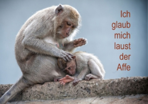 Ich glaub mich laust der Affe (Tischaufsteller DIN A5 quer)