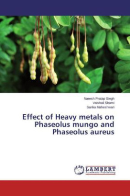 Effect of Heavy metals on Phaseolus mungo and Phaseolus aureus