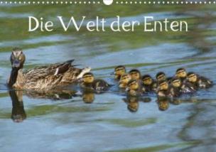 Die Welt der Enten (Posterbuch, DIN A3 quer)