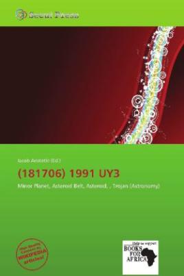(181706) 1991 UY3