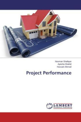 Project Performance