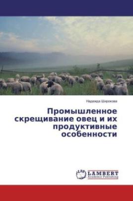 Promyshlennoe skreshhivanie ovec i ih produktivnye osobennosti