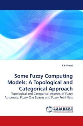 Some Fuzzy Computing Models: A Topological and Categorical Approach