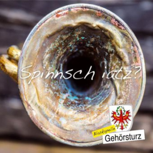 Spinnsch iatz?, 1 Audio-CD
