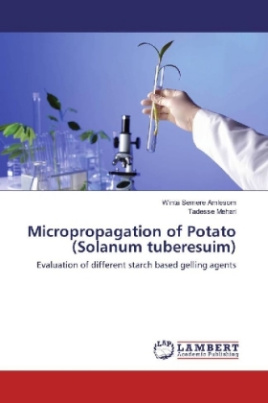 Micropropagation of Potato (Solanum tuberesuim)
