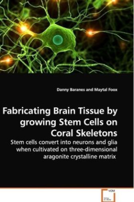 Fabricating Brain Tissue by growing Stem Cells on Coral Skeletons