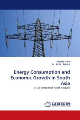 Energy Consumption and Economic Growth in South Asia