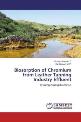 Biosorption of Chromium from Leather Tanning Industry Effluent