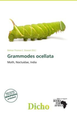 Grammodes ocellata
