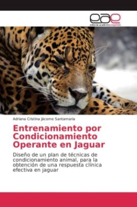 Entrenamiento por Condicionamiento Operante en Jaguar