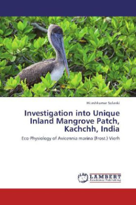 Investigation into Unique Inland Mangrove Patch, Kachchh, India