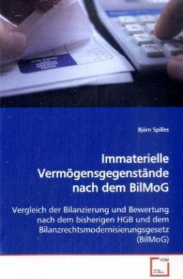 Immaterielle Vermögensgegenstände nach dem BilMoG