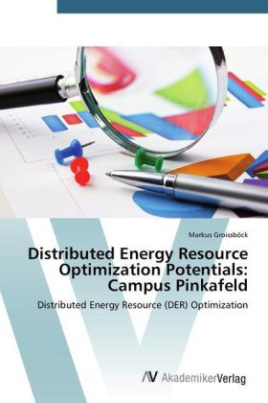 Distributed Energy Resource Optimization Potentials: Campus Pinkafeld